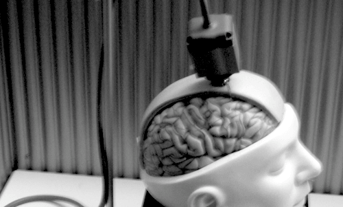 Communications Giant Acquires Rights to Brain Computer Interface